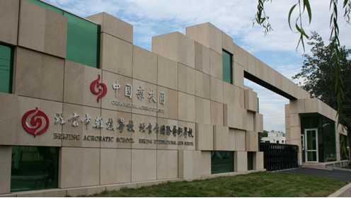 北京市杂技学校项目